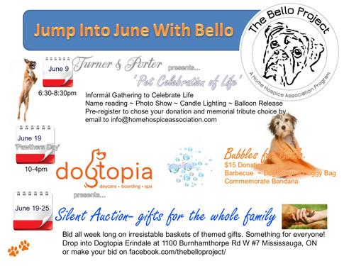 June Overview Flyer Bello Project.jpg