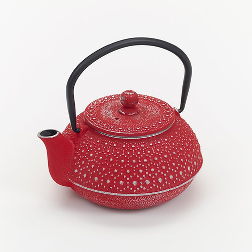 CWE110 Cast Iron  Tea Pot Daisy 0.5 ltrs