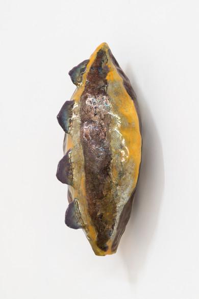 Akainacephalus Mutabilis
