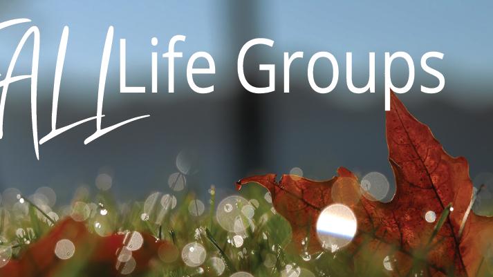 6:00 PM - Life Group (Denise Ericks)