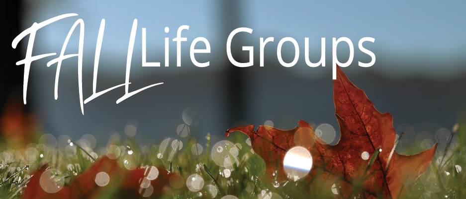 fall life group website graphic.png