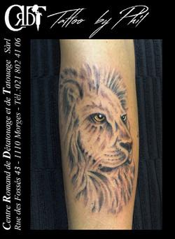lion martine_ok