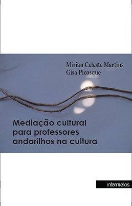 Mediação cultural para professores