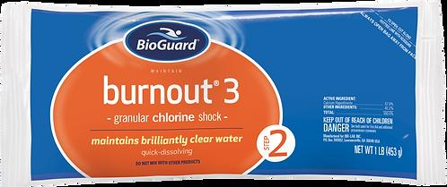 Burnout® 3
