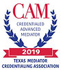 TMCA_2019_CAM_LOGO_Color.jpeg