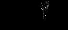 FIVESTAR_logo.png