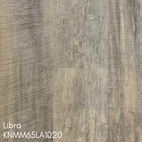 v-Libra-KNMM65LA1020.jpg