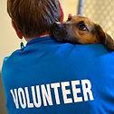 Volunteer - Pets 4 G.I.s