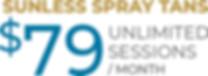 VersaSpa Spray Tan Tiki Image Monthly Unlimited