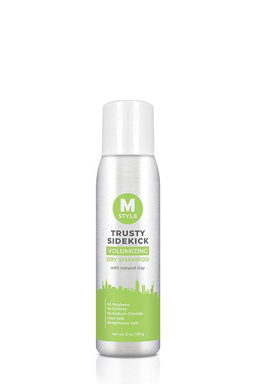 Trusty Sidekick Dry Shampoo