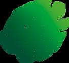 plante-1.png