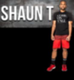 shaun-t-header.png
