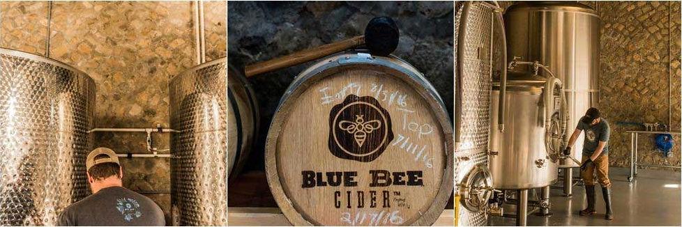 blue-bee.jpg