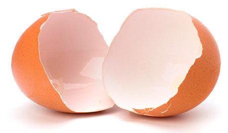 Eierschalenpulver