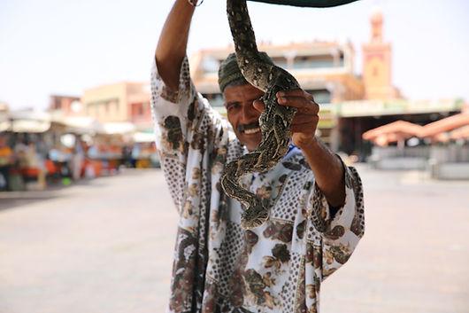 moroccan man holding snake .JPG