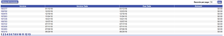 ONLINE DEMO INVOICES print report.png