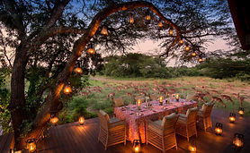 Swaggy_Swan_Travel_Phinda_10-1-730x450.j