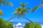 pexels-photo-1591375_edited.jpg