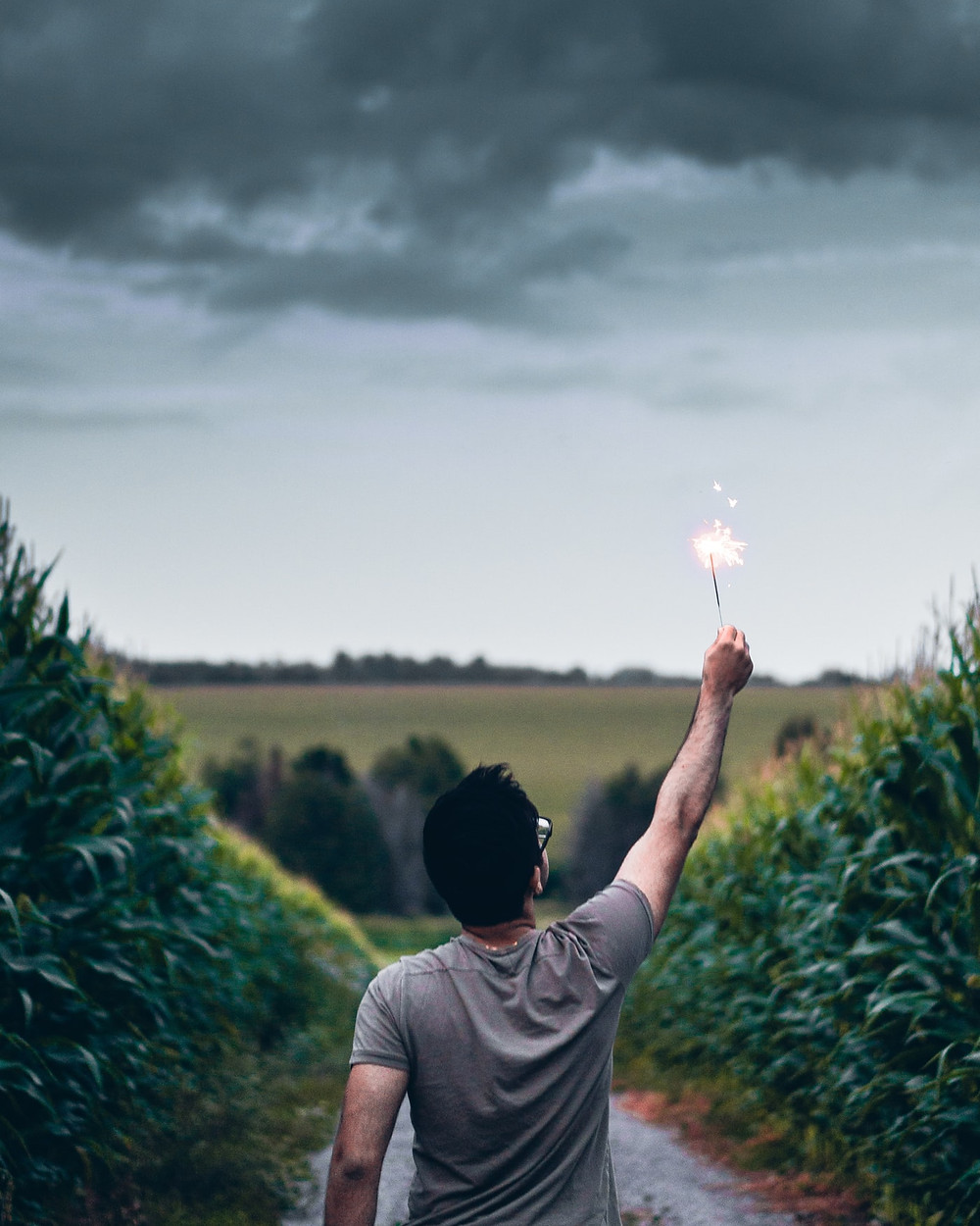 Man With Black Hair And Glasses In Gray T-Shirt Stands With Back To The Camera Between Two Rows Of Tall Corn-Like Plants Holding Up A Sparkler Towards A Stormy Sky How To Heal Childhood Trauma And Live Your Dreams Relationship Break-Up Self Improvement Lifestyle Advice Blog Fabsolutely Co