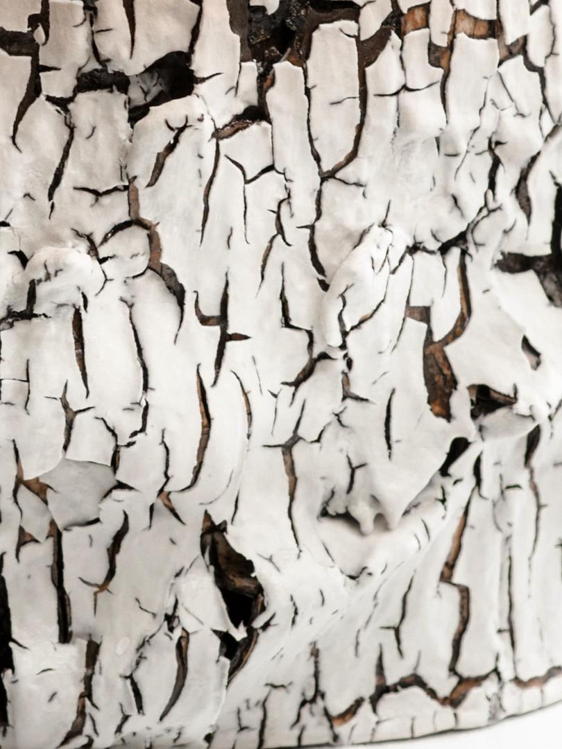 Detail of 'Barkskin'