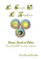Couverture_Stress_sante_et_detox.jpg