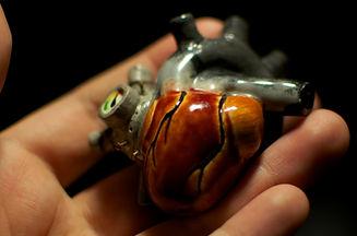 heart in hand.jpeg