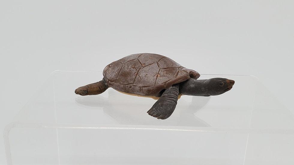 Balata Leather Back Turtle