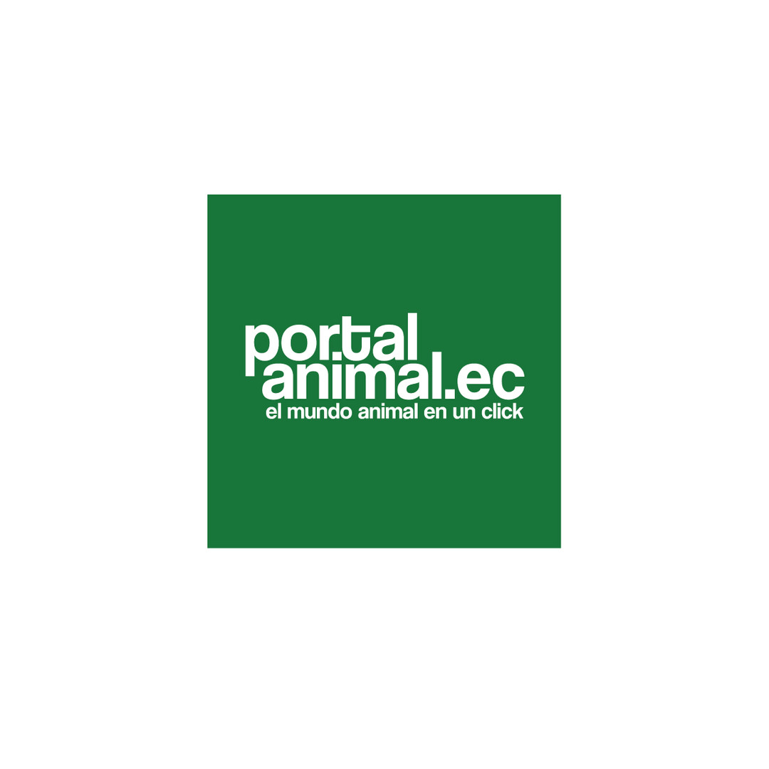 Portal Animal