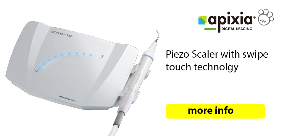 scalex 980 piezo dental scaler with swip