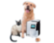 apixia veterinary digital scanner with e