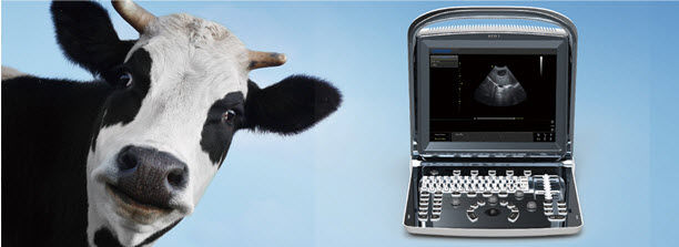 portable-veterinary-ultrasound-system-70890-7108653.jpg