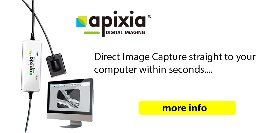 apixia veterinary dental direct digital
