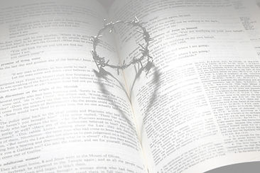 bible%20heart_edited.jpg