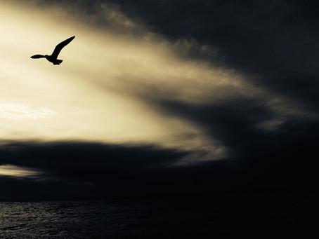 Il vento là in alto che sa di mare