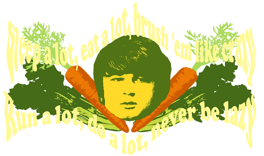 Brian's Psychedelic Vegetables