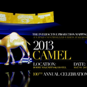 CAMEL - INTERACTIVE INSTALLATION
