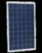Eagle-60-240x300.png