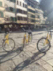 florenceopdefiets#fietstour#wandeltour#n