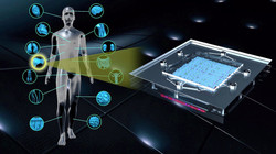 Organ-on-Chip devices