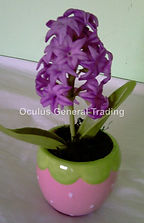 Purple Hyacinth.jpg