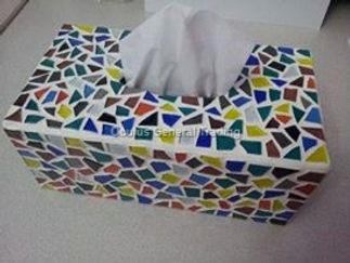 Tissue Holder 4
