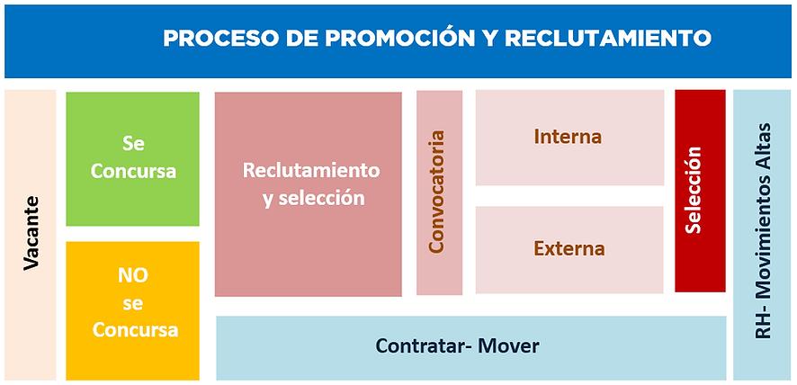 PROCESO_DE_PROMOCIÓN_Y_RECLUTAMIENTO.PNG