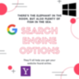 Search Engine Options.png
