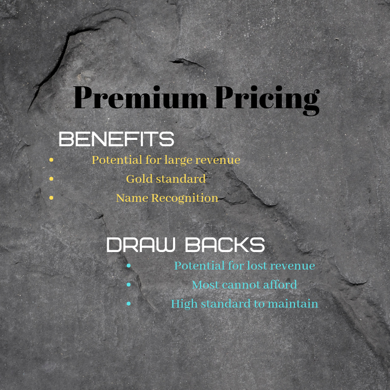 A premium pricing strategy is a great way to get consumers talking about how great your products are.