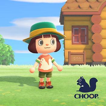 CHOOP22.jpg