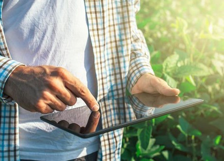 New report: Digital services to transform African agriculture
