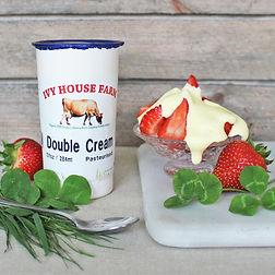 Organic Jersey Double Cream