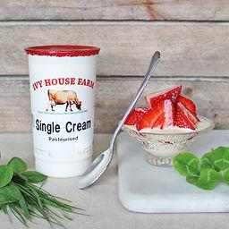 Organic Jersey Single Cream