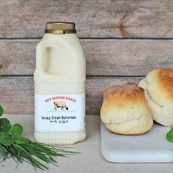 Organic Jersey Buttermilk
