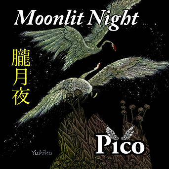 moonlit_night.jpg